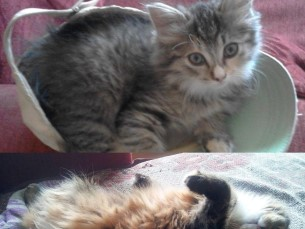 Mia 2-kuusena ja 2-aastasena