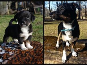 Beti 2 kuud vs. 1 aasta