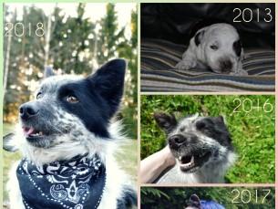 Minu armas Moritz, kes on sündinud sõbrapäeval. 😊