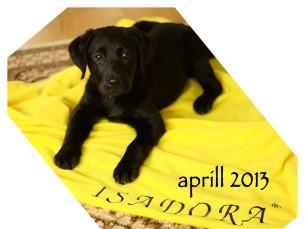 Isadora 2 kuune ja nüüd 5 aastane