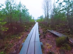 Reisivideo (RolandTeeäärII)