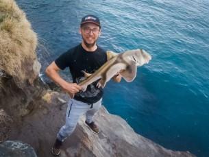Port Jackson Shark. Püütud Austraalias, Sydney lähedal 12.09.2019 põhjarakendusega. Söödaks oli samast kohast püütud landiga yellowtail.  Erilist võitlust tolle hai poolt polnud, kuid nägu lõi naerule küll, kuna tegemist mul esimese hai ja üldsegi nii suure kalaga 😁
